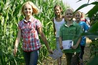 Maislabyrinth und mehr im Bubenheimer Spieleland